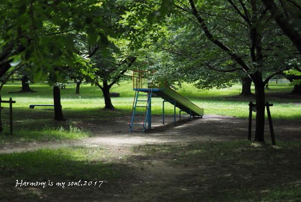 P6300804.jpg